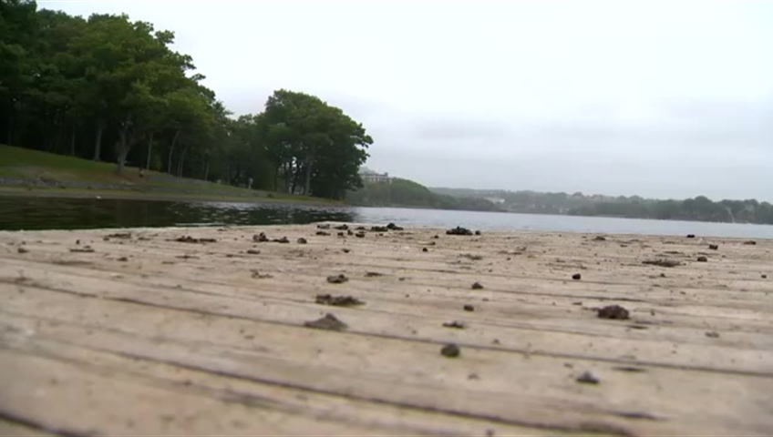 Number of days Halifax beaches closed increasing