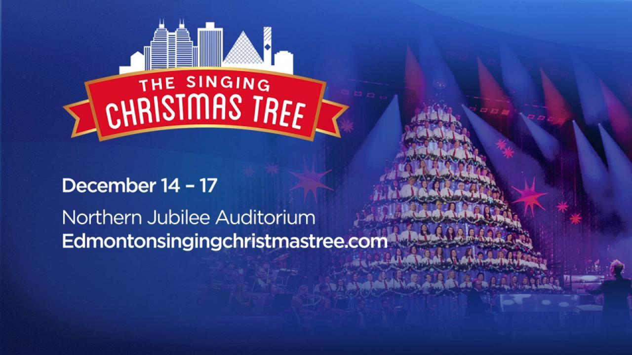 Singing Christmas Tree Edmonton.The Singing Christmas Tree Is Ready To Wow Audiences