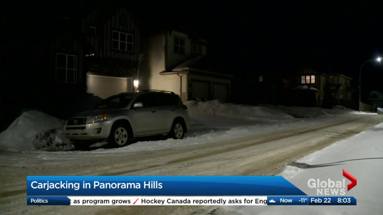 carjacking in panorama hills | watch news videos online
