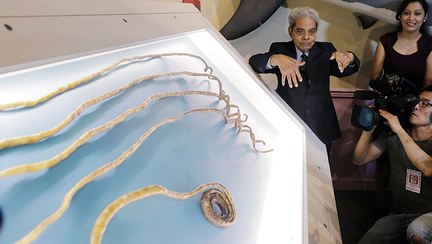 Ripley\'s unveils world\'s longest fingernails | Watch News Videos Online