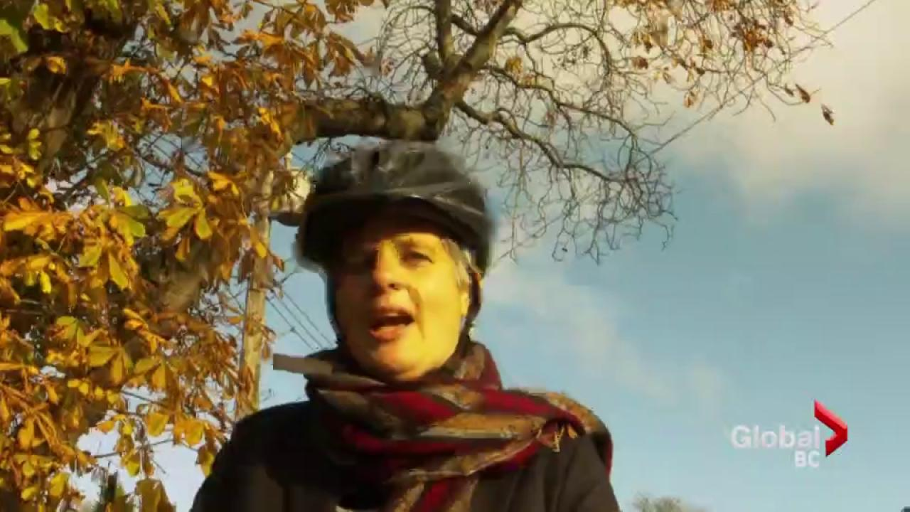 Victoria celebrities appear in bike video | Watch News Videos Online