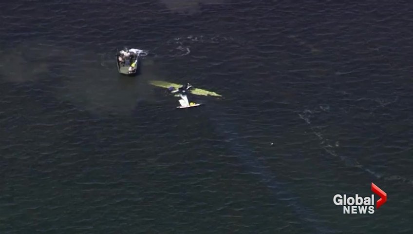 Aerial footage of small plane crash in Gulf of Mexico which killed pitcher  Roy Halladay