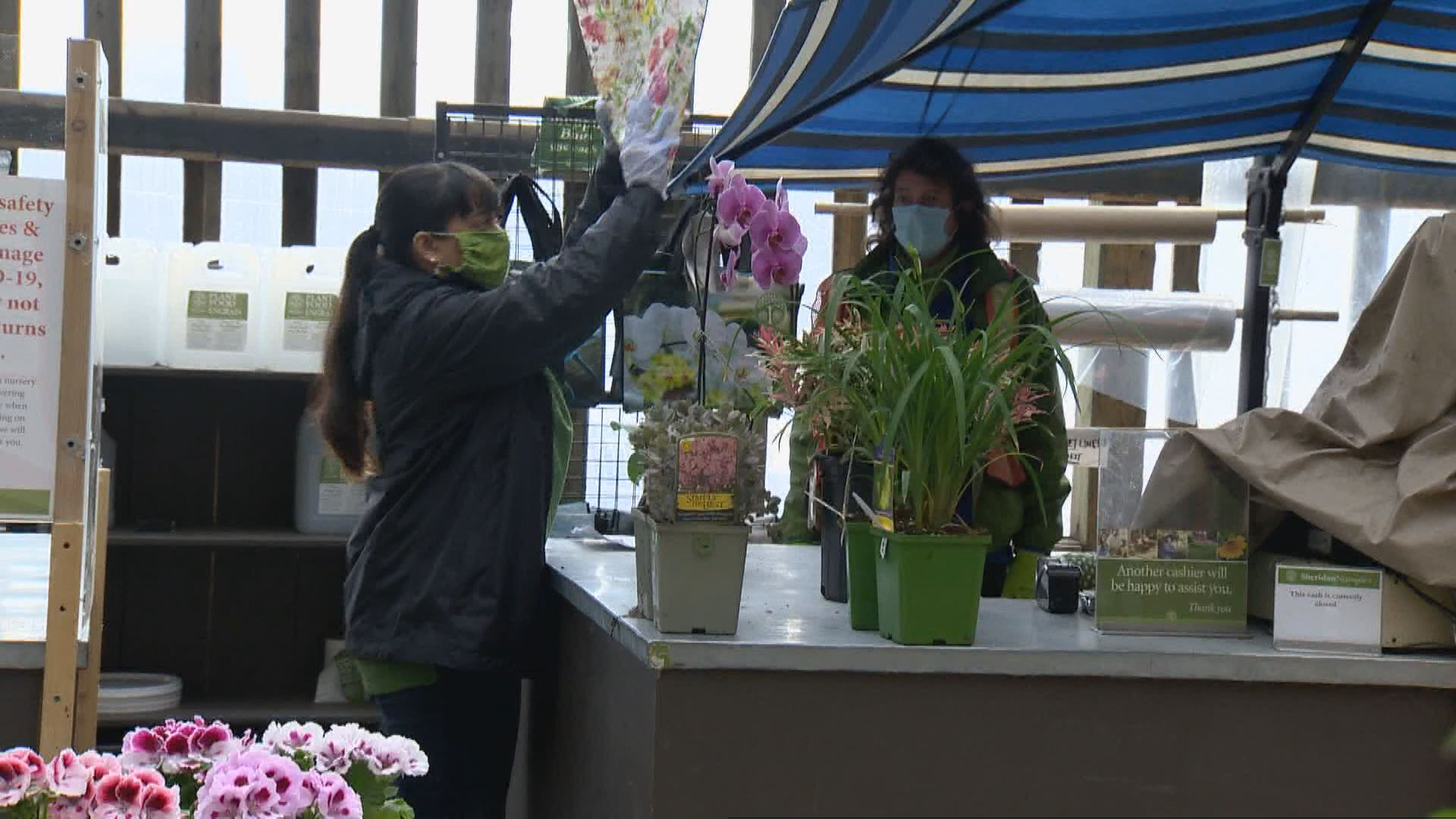 Ontario Garden Centres And Nurseries Fully Open To The Public Watch News Videos Online